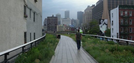 high line park nyc, architecture nyc, the three tomatoes