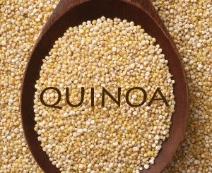 quinoa, salad, recipe, healthy, the three tomatoes