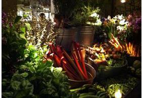 abc kitchen, gael greene reviews, the three tomatoes