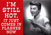 Not So Hot Flashes, Ellen Dolgen, The Three Tomatoes