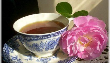 writing tea, the three tomatoes