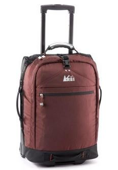best carry-on luggage, the traveling professor, the three tomatoes