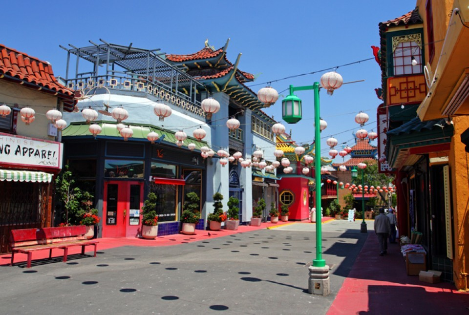 LA LIFE: Bonsai, Leap, Nature Connects, China Town