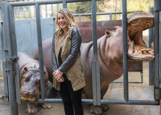 LA LIFE: Hippos, QuiltCon, MONA, Oscar Costumes