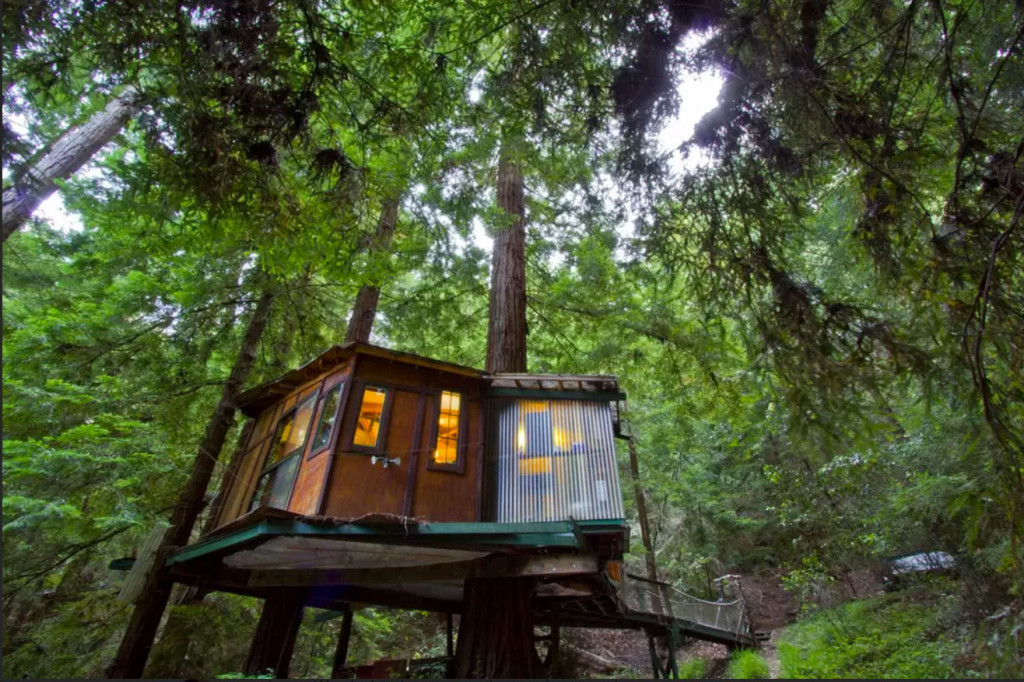 SF Life: Sunday Stroll, Annie Liebovitz, Tree Houses, Colette Uncensored