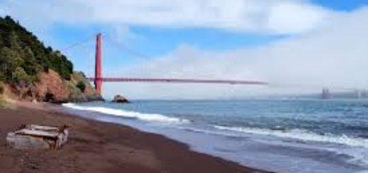 SF LIFE: Beaches, Picnics, Putt Putt, Frida Kahlo