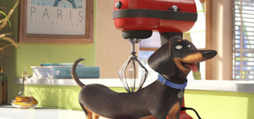 TheSecretLifeofPets_article_story_large