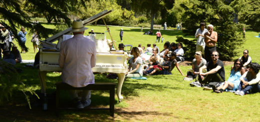SF Life: Flower Piano, Exploratorium, Pygmy Forest, Pop Ups