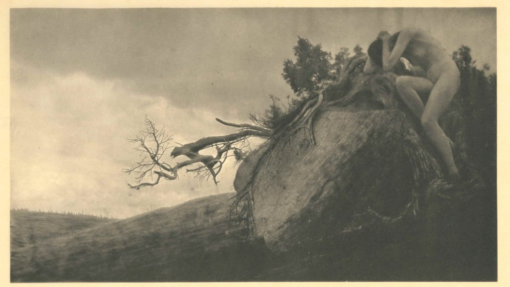 SF LIFE: Beautiful, Wine Walk, Anne Brigman, Aerial Arts