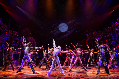 Meow! Cats is Back on Broadway.