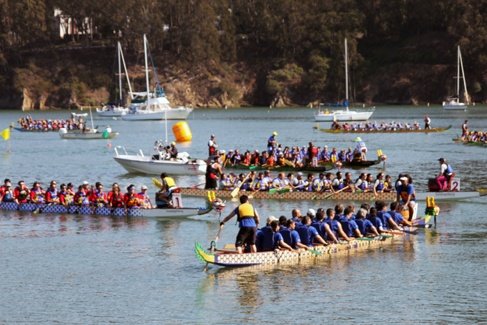 SF LIFE: Laughs, Dragon Boats, Peace, Pups