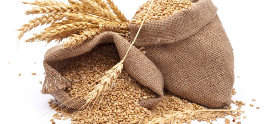 Grains, Gluten and Genetics – What You Want To Know!