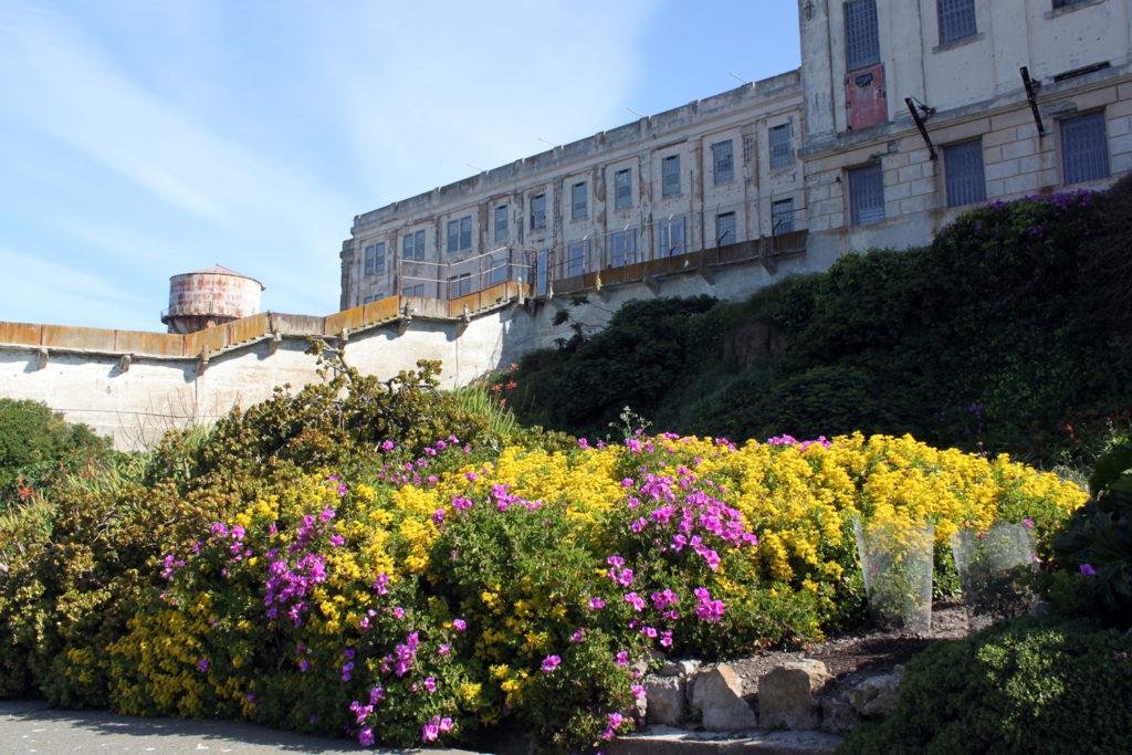 alacatraz garden