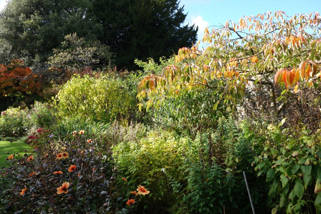 A Walk in the Garden with Lady Carnarvon