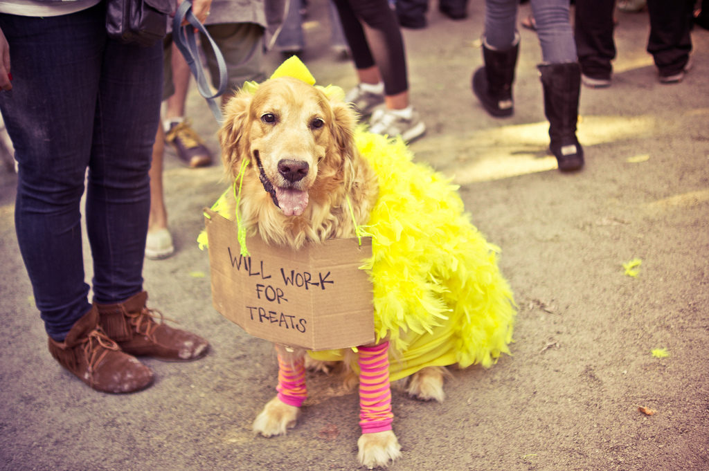 NYC Life: 6 Halloween Events, Cannabis, and Holiday Cheer