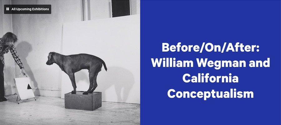 Now at the Metropolitan Museum: William Wegman and Joseph Corneel