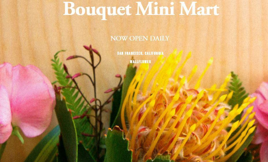 SF LIFE: Book Tour, Brews & Botanicals, Cherry Blossoms, Fairs, Amadeus
