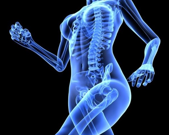 Menopause and Osteoporosis: How to Take Charge of Your Bone Health