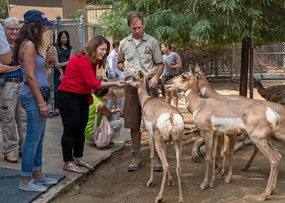 LA Zoo Wild Adventures