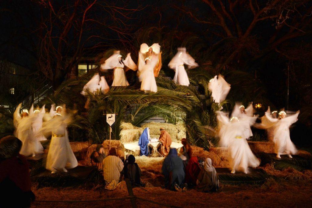 SF Life: Night Bloom, Society Jane, Golden Girls, Living Nativity