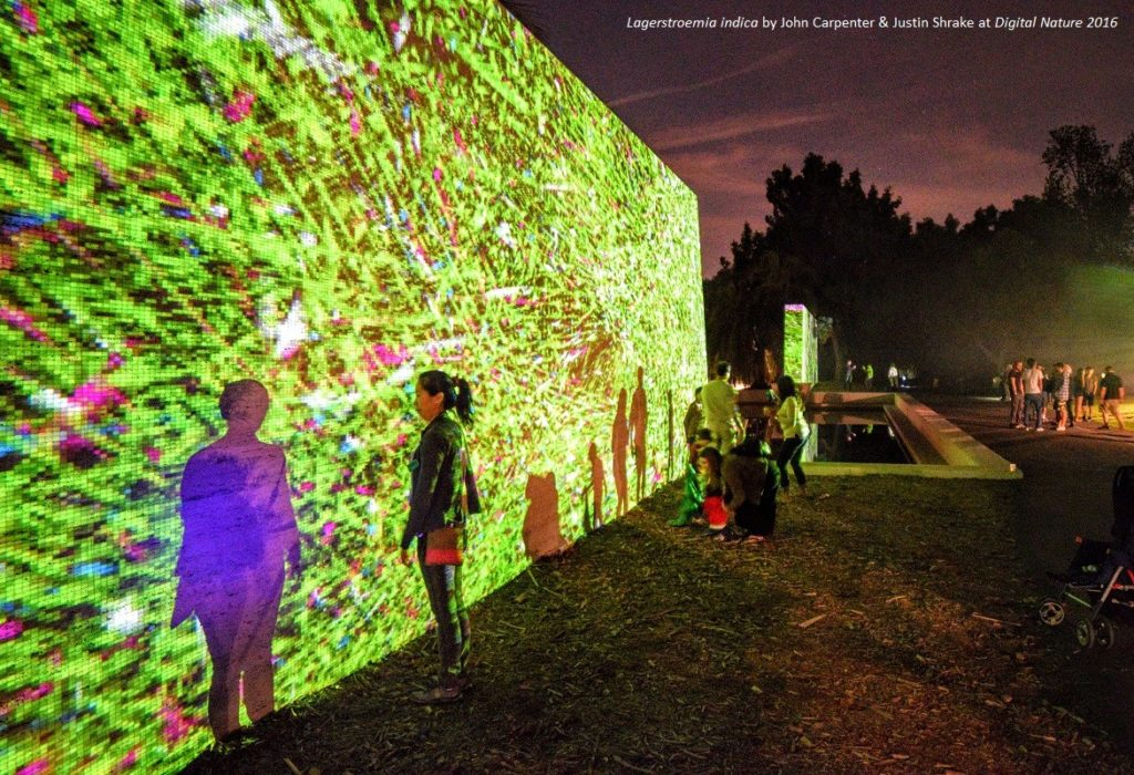 Digital Nature LA Arboretum