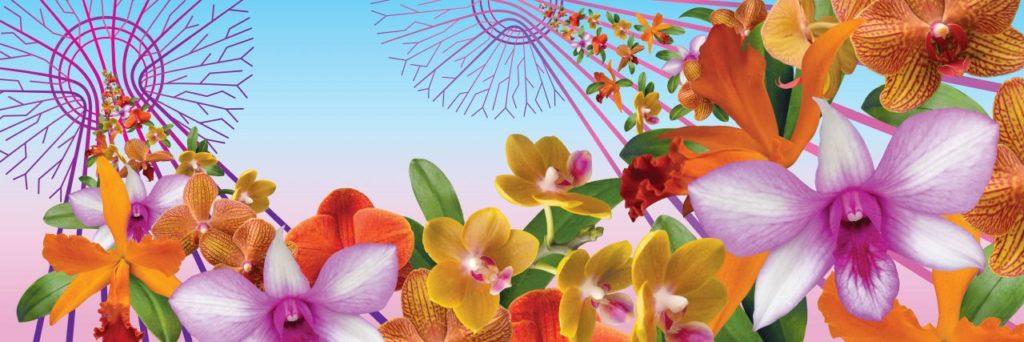 Feb. 23-April 28. The Orchid Show: Singapore