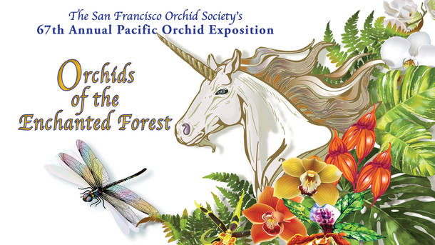 Pacific Orchid Exposition - Orchids of the Enchanted Forest