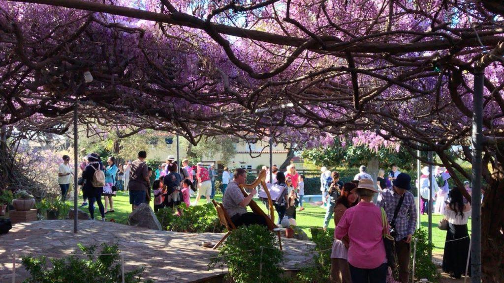 LA LIFE: St. Paddy's Day, Wisteria Fest, Art+Feminism, NARS, Butterflies