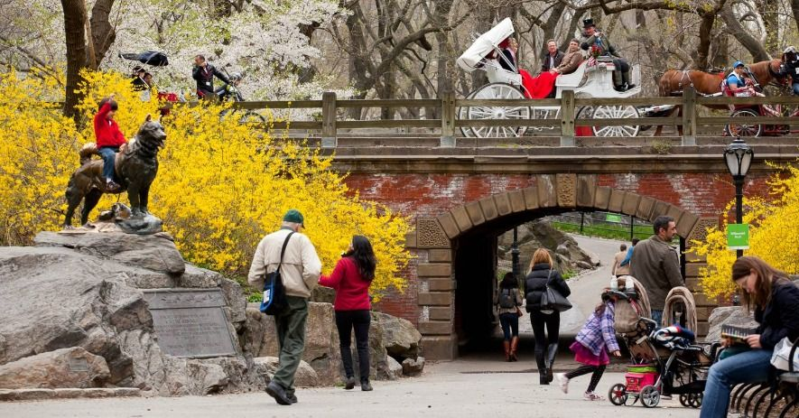 NYC LIFE: Spring Time in New York – Events Galore!