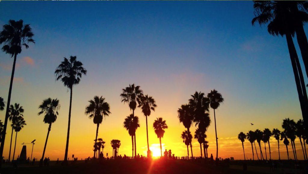 LA LIFE: Earthquake Smarts, Ladies Night, Sunset Swim, Lotus Festival