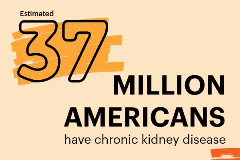 Kidney Disease in The News