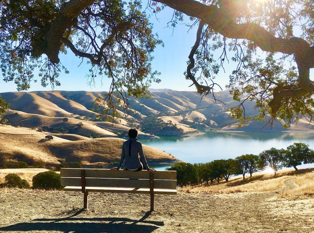 SF LIFE: Art in August, East Bay Parks, Garage Sale