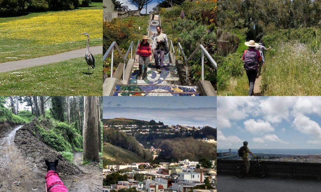 SF LIFE: Girl Bosses, Arts Season, Veggies, Hiking