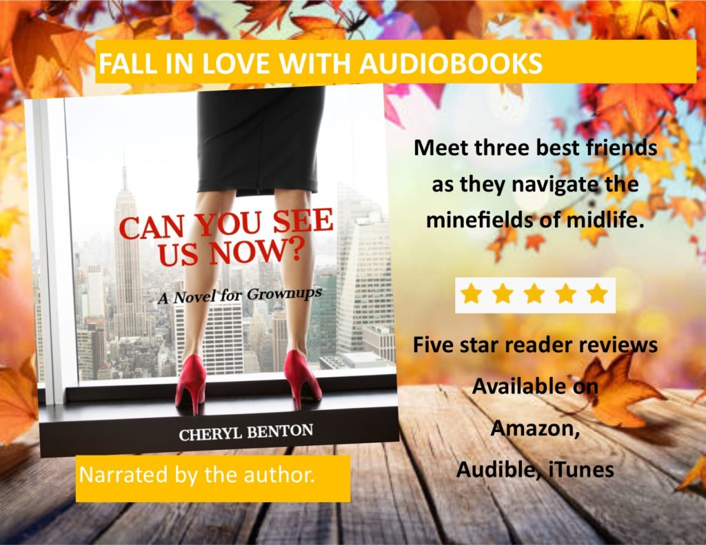 Can You See Us Now? the audiobook