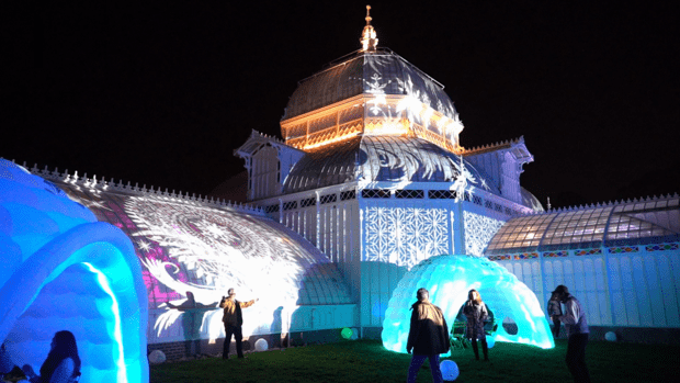 SF LIFE: Giving Thanks, Night Bloom, Labrynth, Giveaway, Lanterns