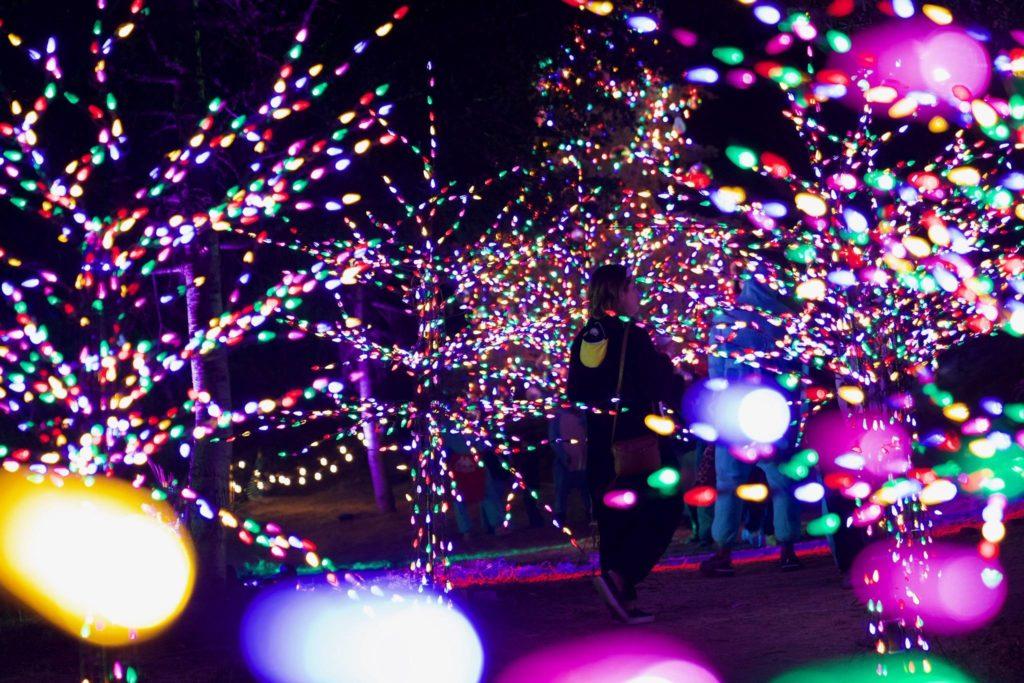LA LIFE: Magical Holiday Events, LA Style