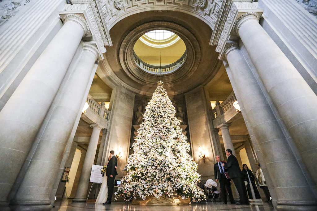 SF LIFE: Holiday Happenings, Lights, Food