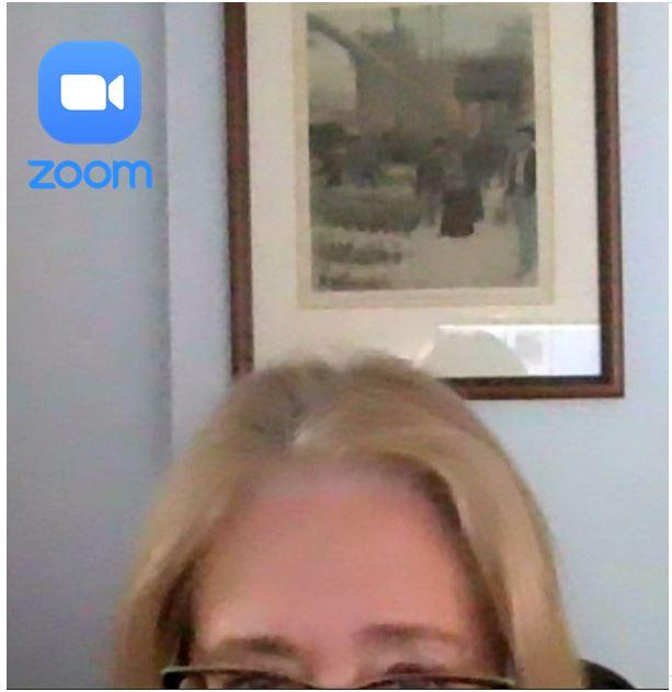 Hmm: Zoom Image Consultant?
