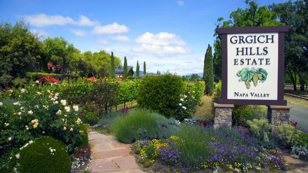 Napa Valley Wine Event Recap