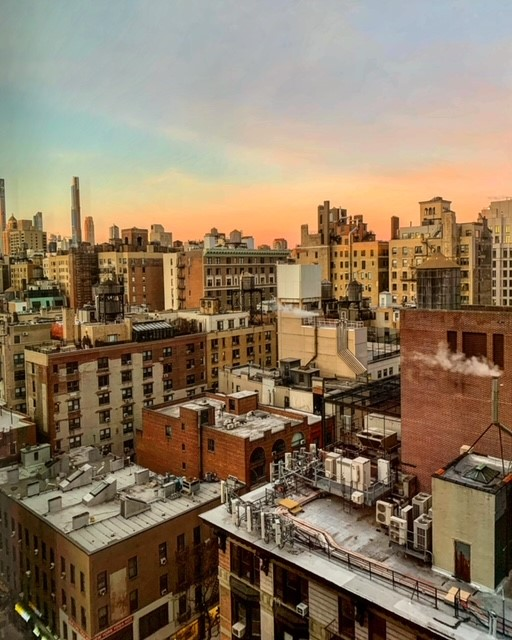 NYC LIFE: New Musical, Antiques, Opera, Puppy Bowl