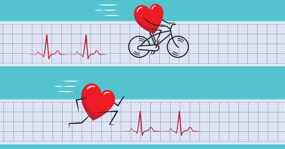 Cardio Conundrum:  Exercise for Heart Health